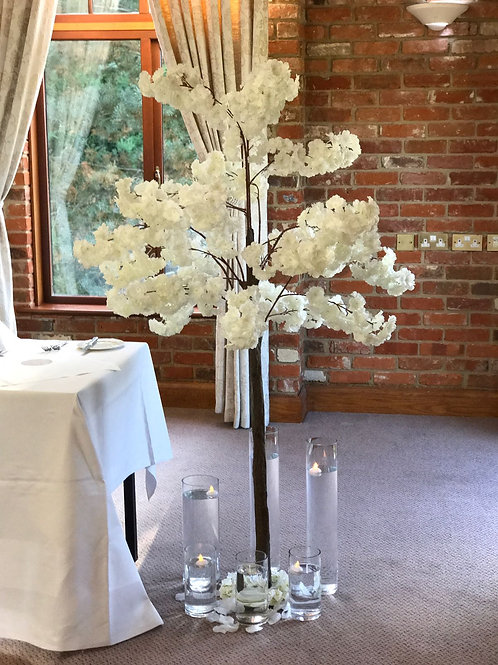 Hire 6ft Blossom Trees