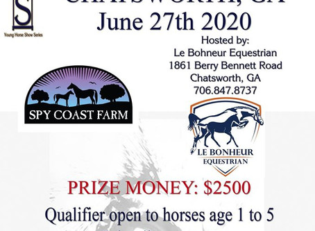 Join us June 27, 2020 for the Young Horse Show Series at Le Bonheur