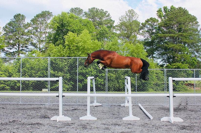 true love free jump.jpg