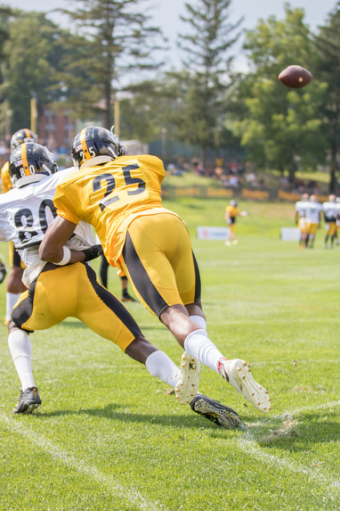 steelers_training_camp_8_14-23.jpg