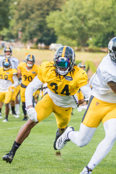 steelers_training_camp_8_14-6.jpg