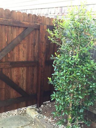 Dark Brown, 6 Ft Side By Side Cedar Fence with Walk Gate