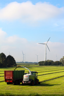Windenergie Urheberrecht_oekorenta