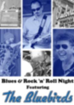 Affiche Bluebirds Vierge .jpg
