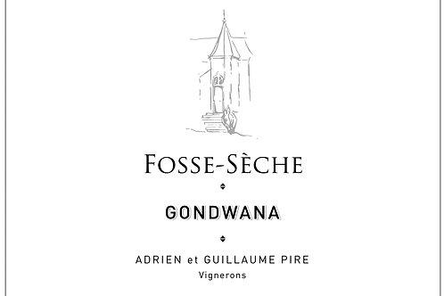 6 x Gondwana 2019