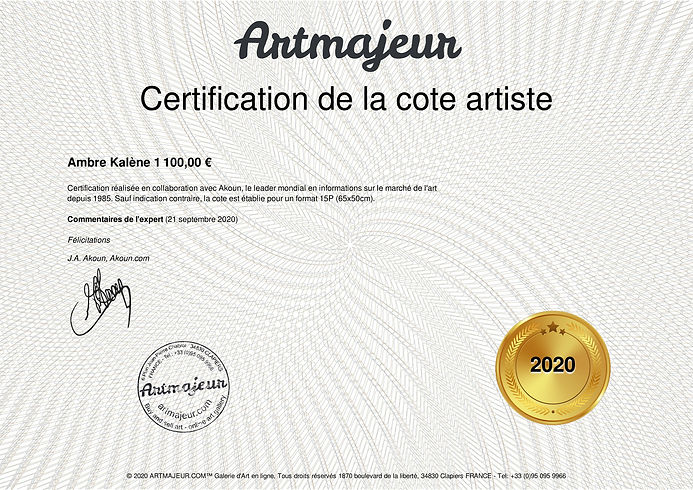 Certification Akoun 2020.jpg