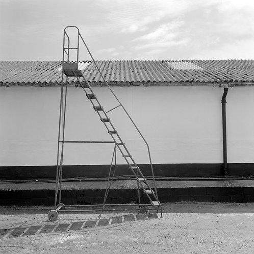 Step Up - Tom Sebastiano