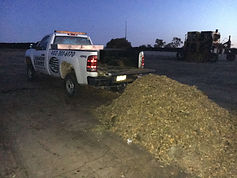 Residential lawn care truck dumping leaves at the Lincoln compost site.