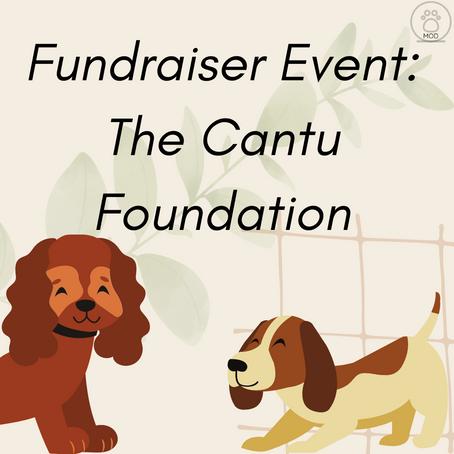The Cantu Foundation