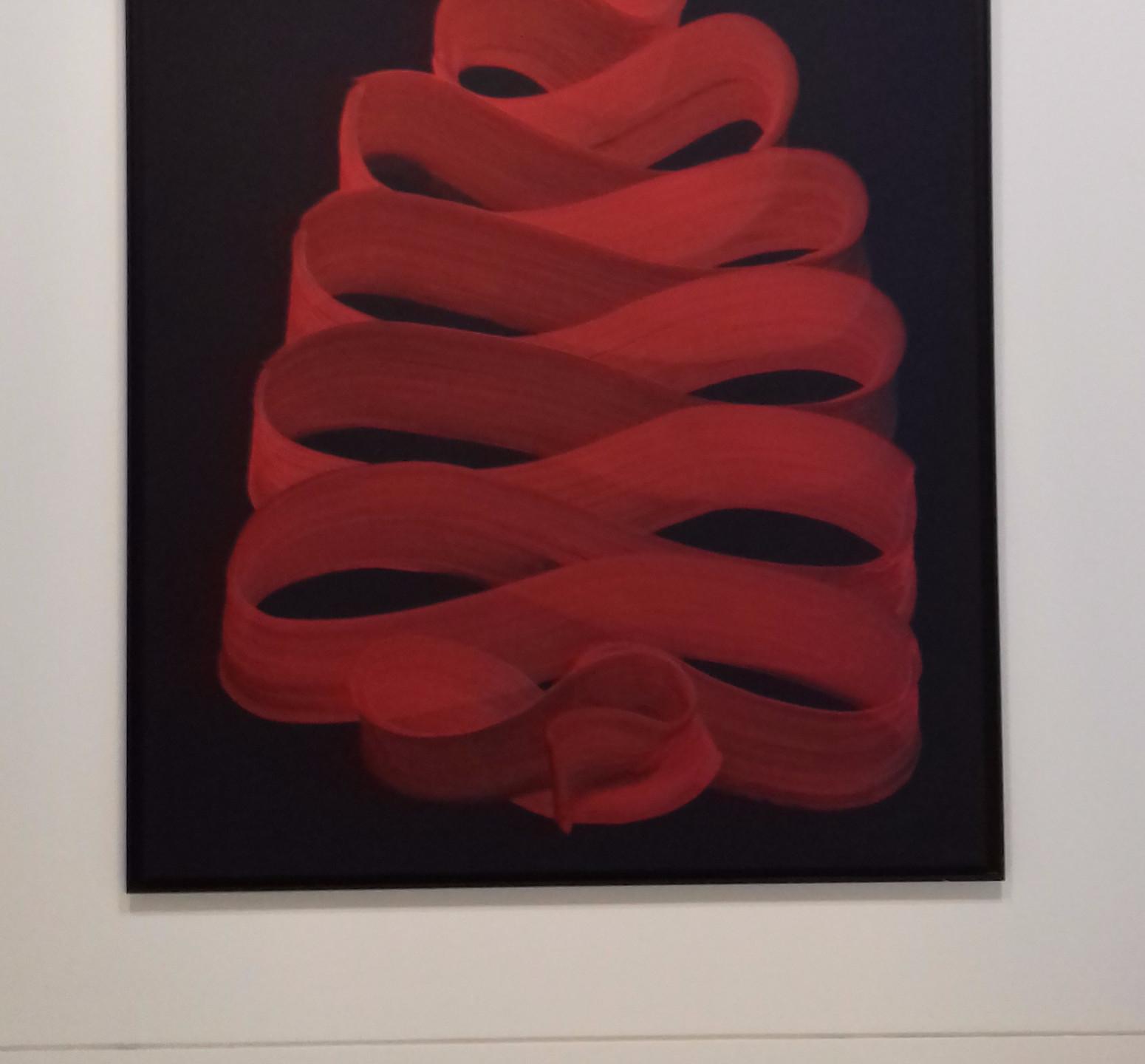 Peinture Enroulement (2013)