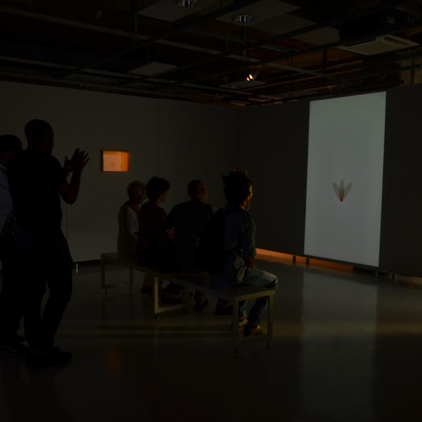 Vidéo et dessin de Younes Rahmoun