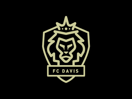 The Vanishing Game: The FC Davis Women's Team Project