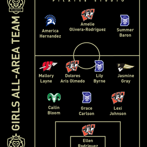2020 FC Davis High School All-Area Girls Team