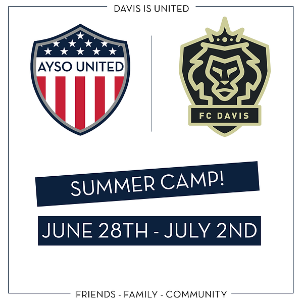 Summer Camp-01.png