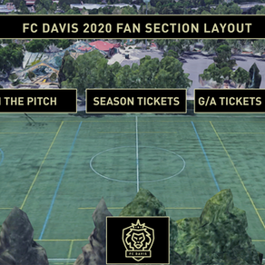 Lion's Add Fan Zone and Pub on the Pitch for 2020 Layout