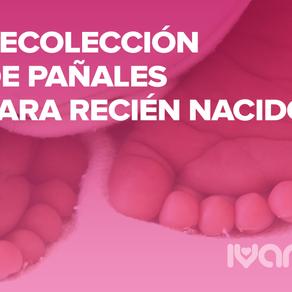 Recolección de Pañales para Recién Nacidos