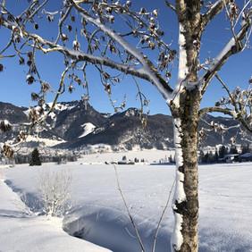 Winter im Kaiserwinkl