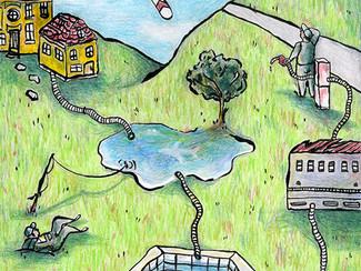 City swamps: a novel source of bioenergy?