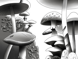 Mushroom wonderland: A leap toward smart packaging materials