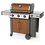 Thumbnail: Asador de gas Genesis II E-315