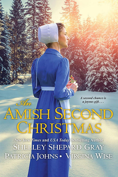 An Amish Second Christmas Cover.jpg