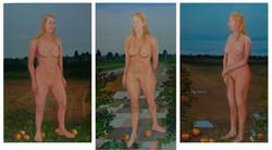 Fraai nederlands naakt triptych
