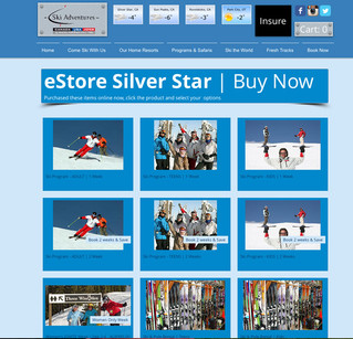 eStore Live on SSVH.com