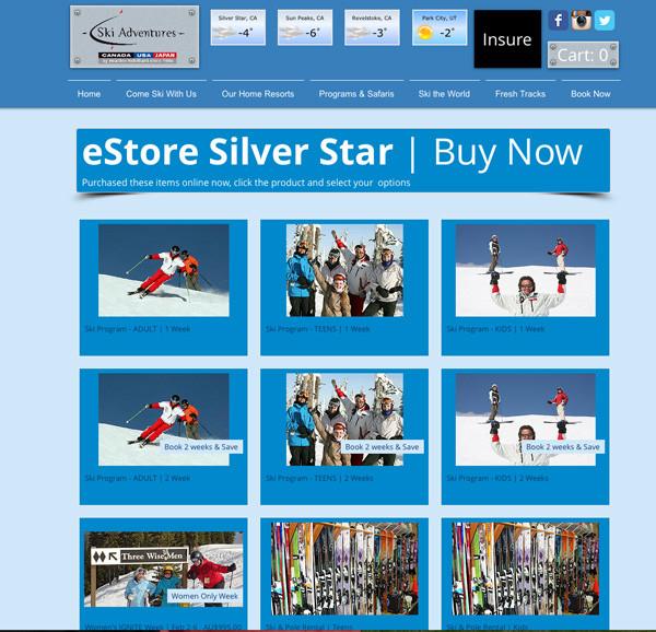 eStore_SS.jpg