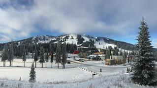 Snowscape Scene