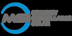 MSI transparent Logo.png