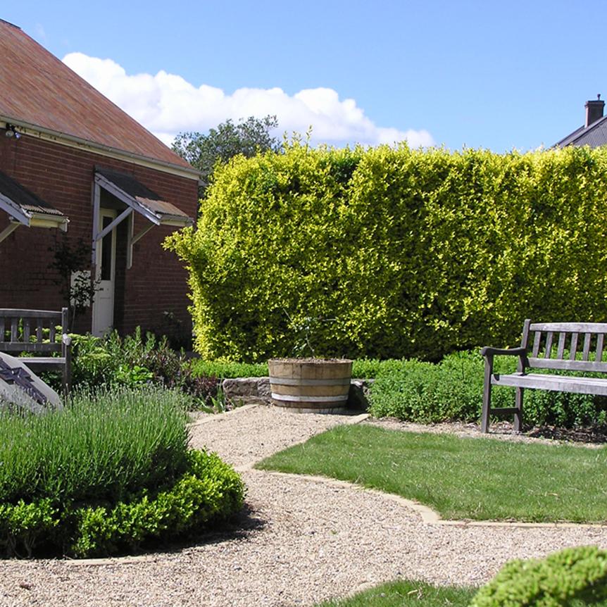 KWGD French garden 2