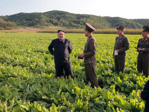 Food Crisis Faced in North Korea, Livelihoods Collapse amid Covid-19 Restrictions