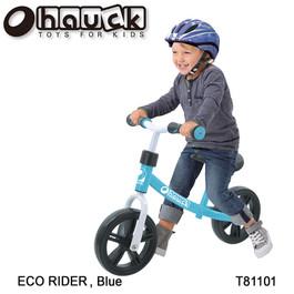 T81101 E-Z Rider 10_ Blue 3 copy.jpg