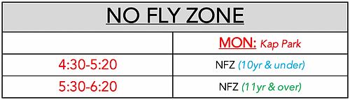 200602 No Fly Zone.png