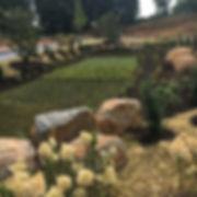 Reserve West Goshen Rain Gardens