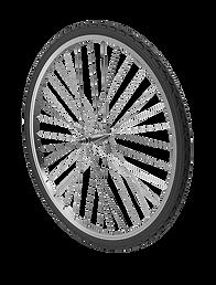 Bicycle_wheel.H03.png