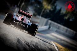 Daniel Ricciardo - Toro Rosso