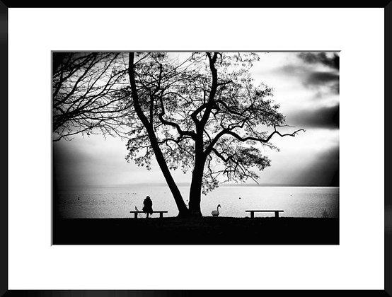TIRAGE PHOTO - LEMAN - N°53