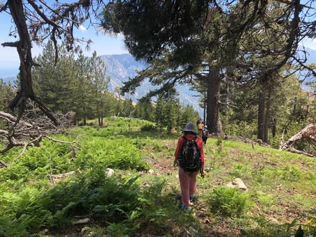 Retraite aux bergeries de Cardo juin 2018