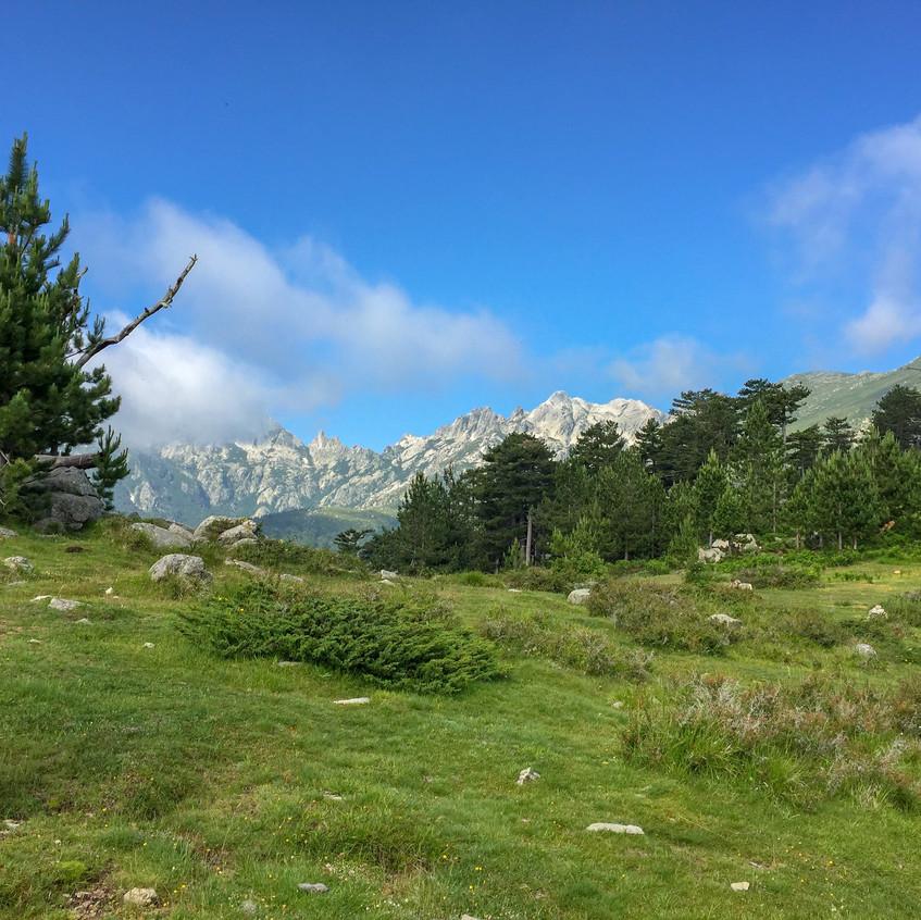 Plateau près de Cardo
