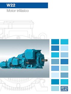 MOTOR TRIFASICO W22.png