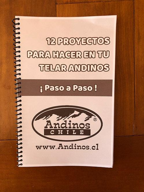 Instructivo 12 proyectos