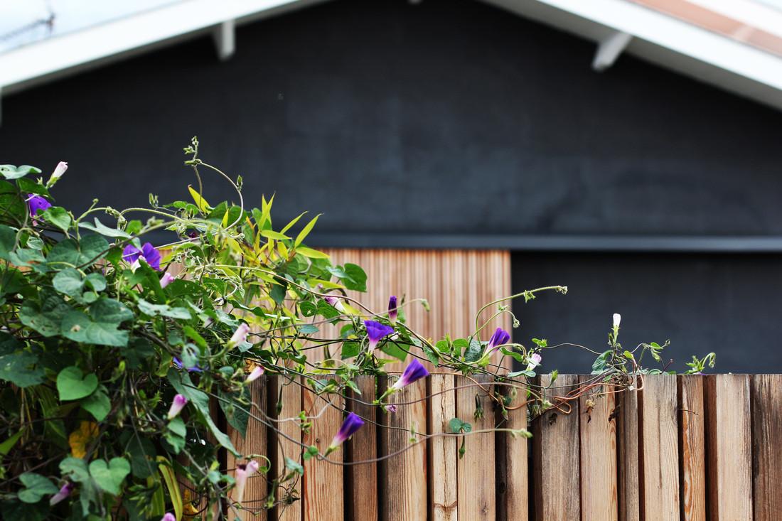 Rénovation maison /Bègles