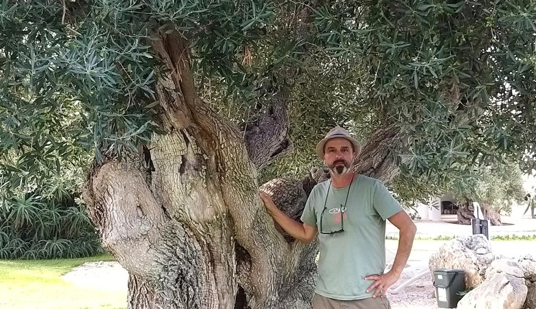 Visite guidate Alberobello