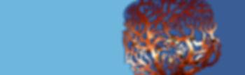 Memory tree RHS.jpg