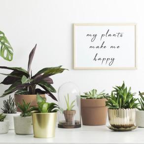 The Extraordinary Power of Plants