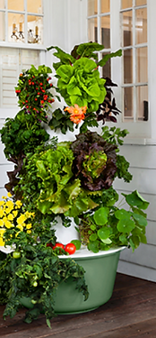 tower garden flex.png