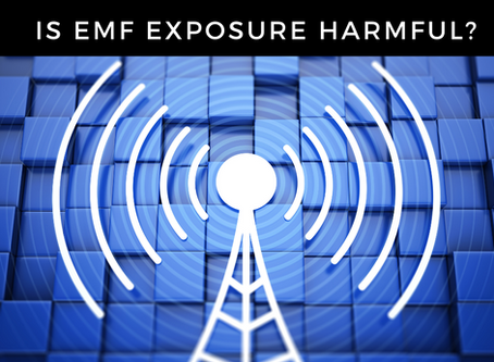 What the heck are EMFs and why should we care about them?