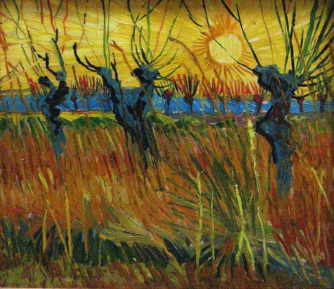 De knotwilgen van van Gogh