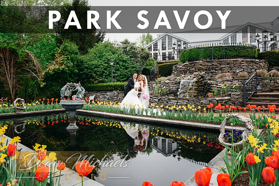 Park Savoy_Web Gallery.png